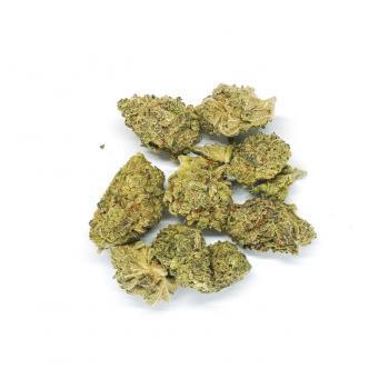 Silver Bud - CBD Kwiaty Konopi